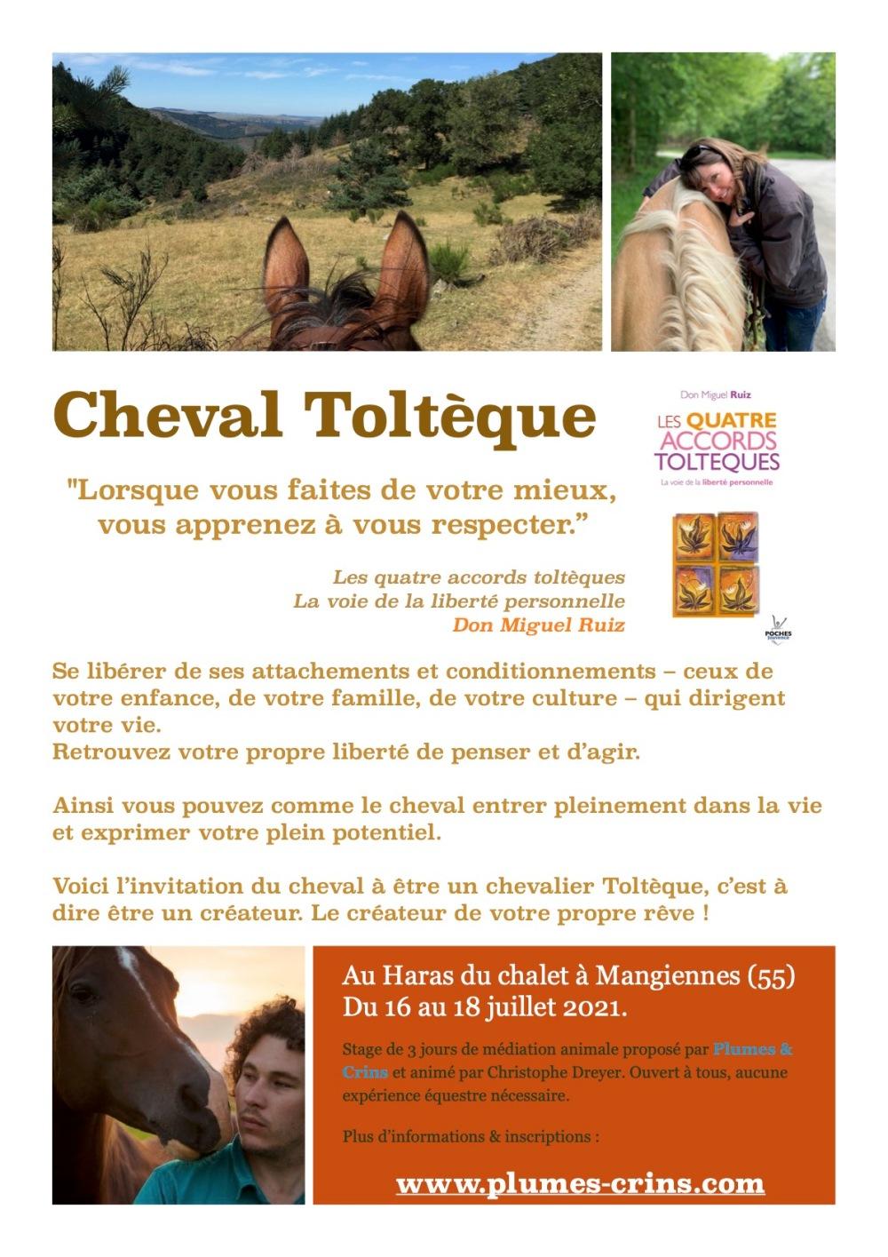 2021-01-07_CD_Tolteque-Affiche-A4_07-2021_v1